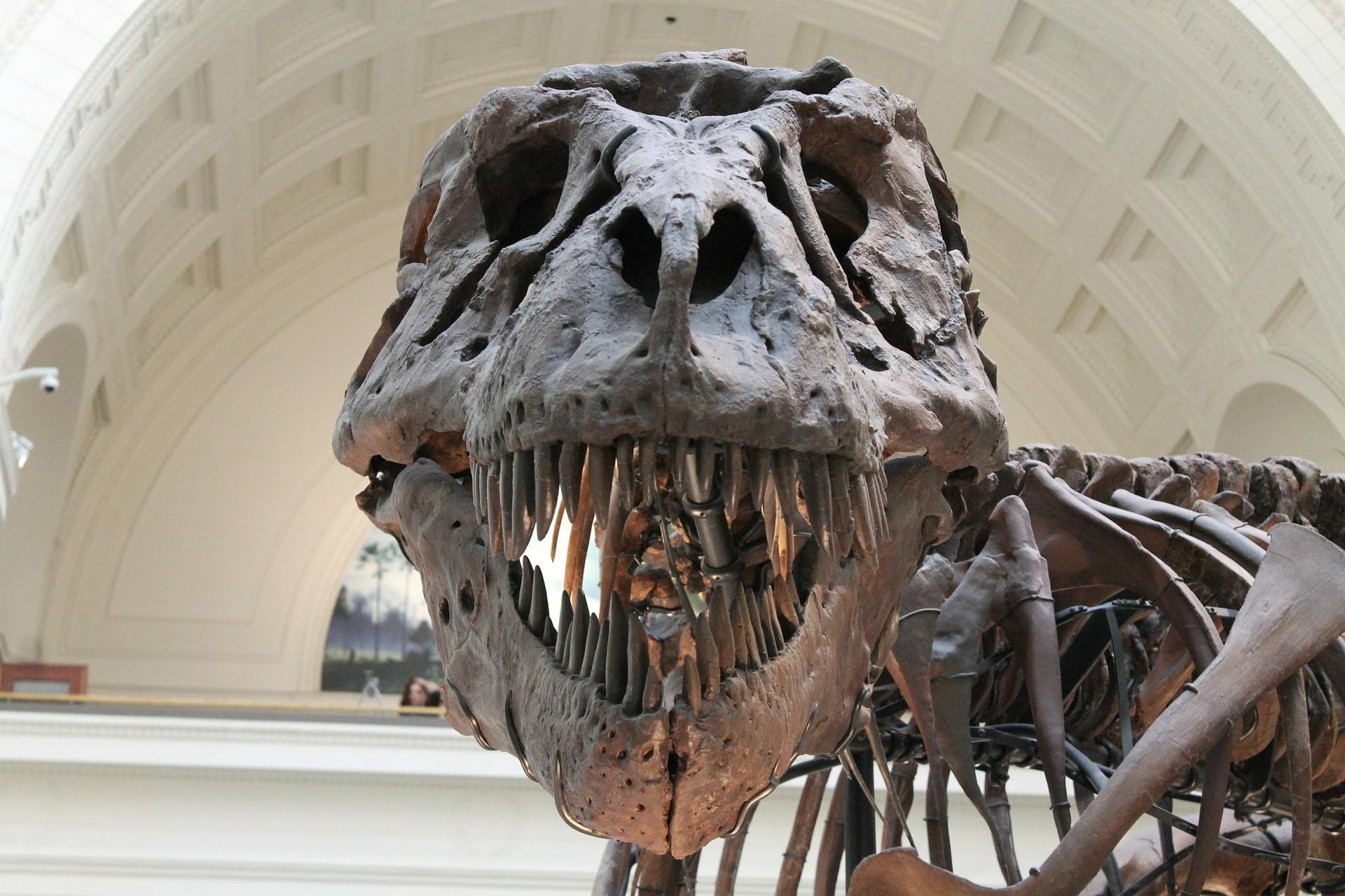 Znanstvenici otkrili ogromnog dinosaura koji je harao sjeverom Italije