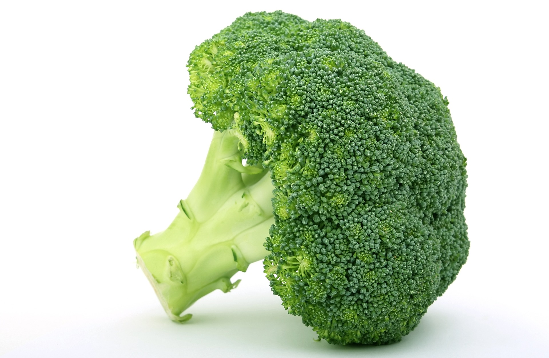 Prehrana bogata vlaknima pridonosi prevenciji razvoja karcinoma i srčanih bolesti