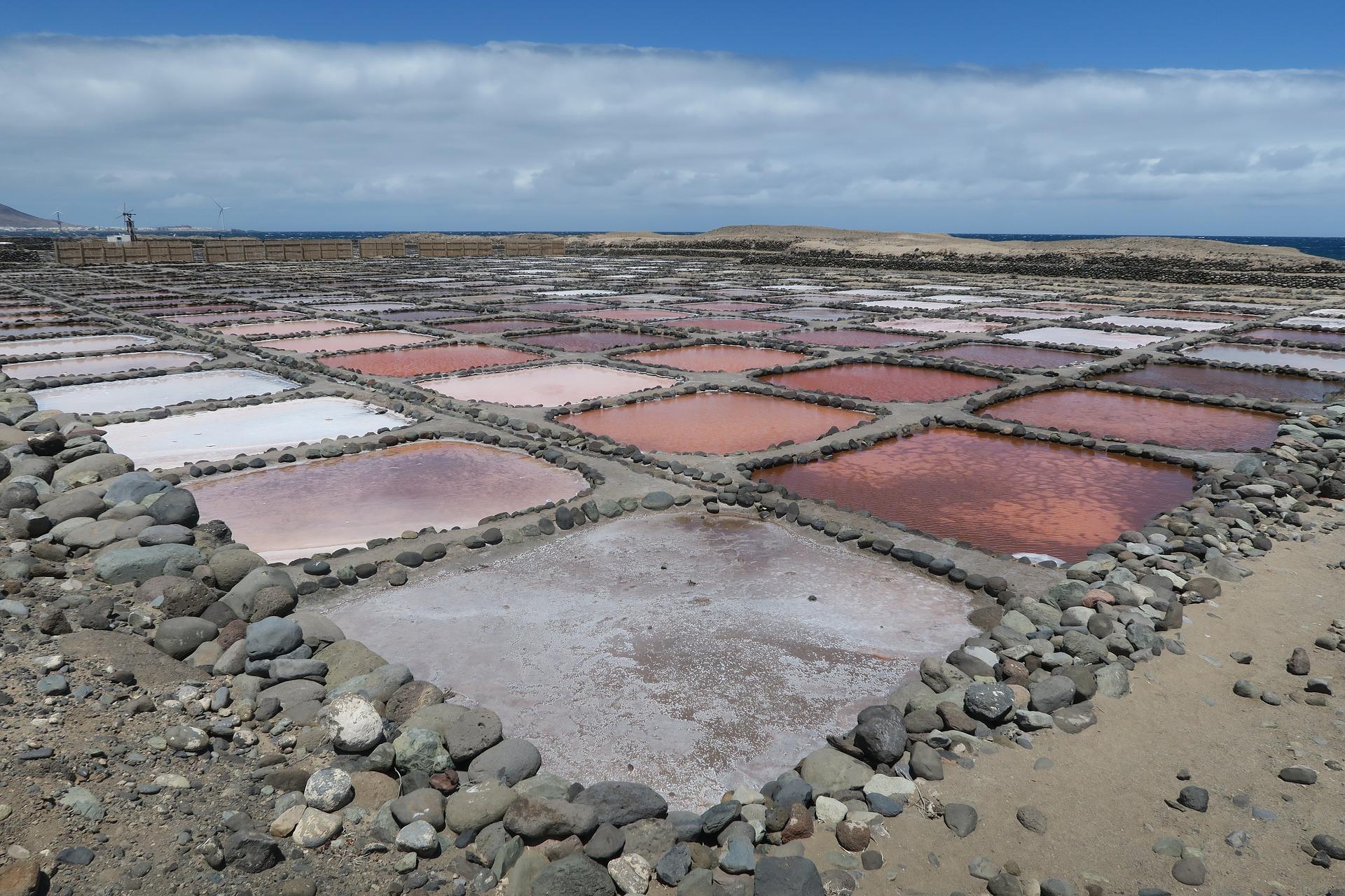 Previše soli: pogoni za desalinizaciju vode štete okolišu – UN