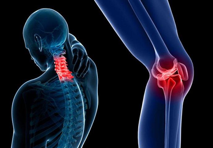 Razvija se cjepivo za bol kod osteoartritisa