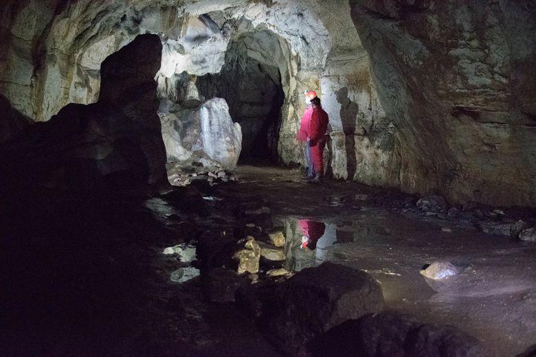 U Istri pronađeni 30 tisuća godina stari pećinski crteži