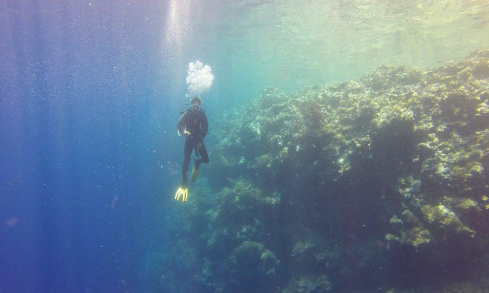 Palau zabranio kreme za sunčanje štetne za koraljne grebene