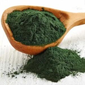 Spirulina se smatra jednim od najstarijih izvora hrane